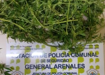 13 03 3 INFRACCION LEY 23.737 Est. Pol. Comunal Gral. Arenales