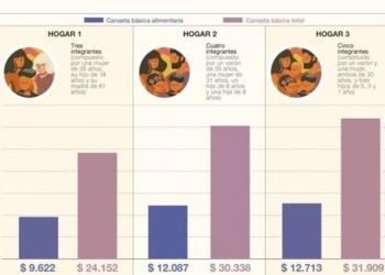 La canasta básica alimentaria (CBA) se determinó tomando en cuenta los requerimientos normativos kilocalóricos y proteicos imprescindibles para que un varón adulto, entre 30 y 60 años. Foto Indec/InfoGEI