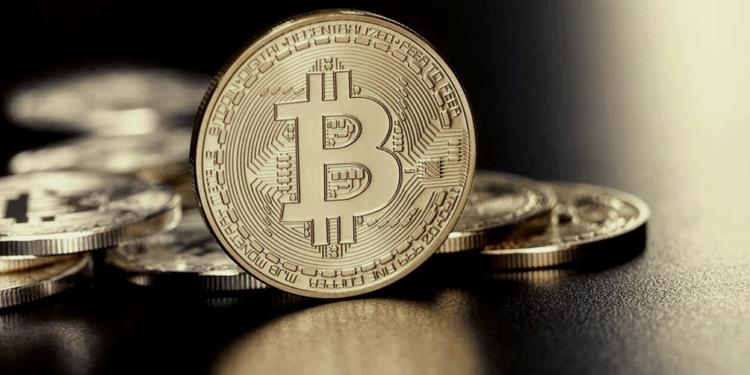 el salvador supero los 500 mil usuarios de billetera bitcoin y abrio cajeros en eeuu