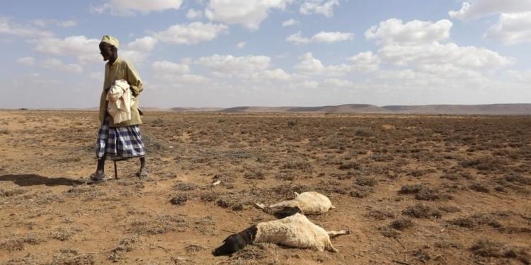 segun el banco mundial el cambio climatico puede hacer migrar a 216 millones de personas