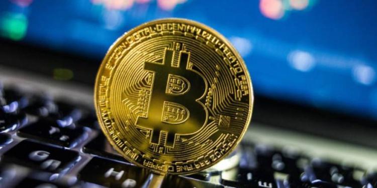 son seguros los monederos de software para bitcoin y criptomonedas